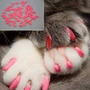 Uñas Para Gato Y Perro (mascota, Animales, Arena, Kitty)