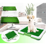 Baño Ecologico Portatil Para Mascotas Perros Gatos