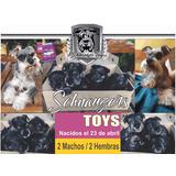 Schnauzer Toys / Miniaturas Totales