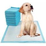 Pañal Para Perros De Piso Entrenamiento Absorbente 50 Unid