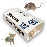 Trampa Rata Ratones Pegamento Glue Extra Fuerte Pack 10un