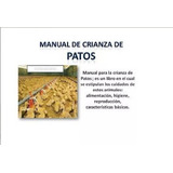 Manual De Cria De Patos Full Ilustrado