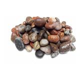 Sustrato Grava Piedra Paracas Para Acuarios Medida 20-30mm