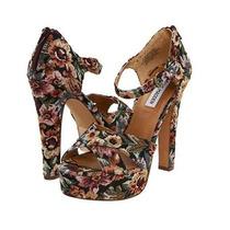 Zapatos Sandalias Steve Madden Gobelino Floral