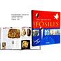 Atlas Ilustrado De Los Fósiles -clasificacion- Descripcion