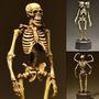 Esqueleto Calavera Demonio 2 Cabezas Full Articulable
