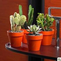 Macetas De Plástico Nº 10 Para Mesas,decoracion , Colores