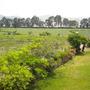 Terreno Agrícola En Las Cálidas Tierras Norteñas