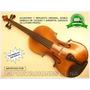 Violin Para Adultos Principiantes Con Curso Y Accesorios