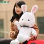 Peluche Muñeco Cerdo Conejo Japones Importados 2015